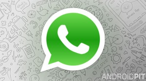 Your ultimate guide to WhatsApp tips, tutorials and updates-androidability
